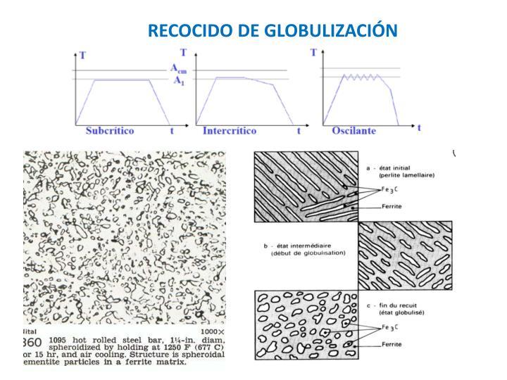 RECOCIDO DE GLOBULIZACIÓN