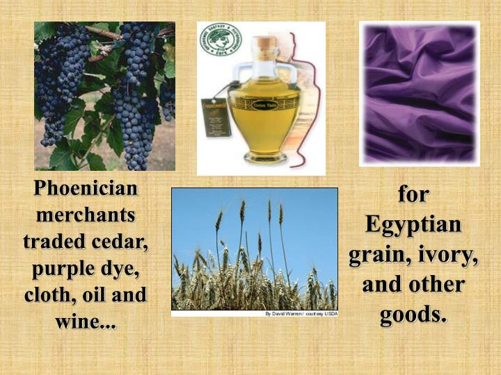 Phoenician merchants traded cedar, purple dye, cloth, oil and wine...