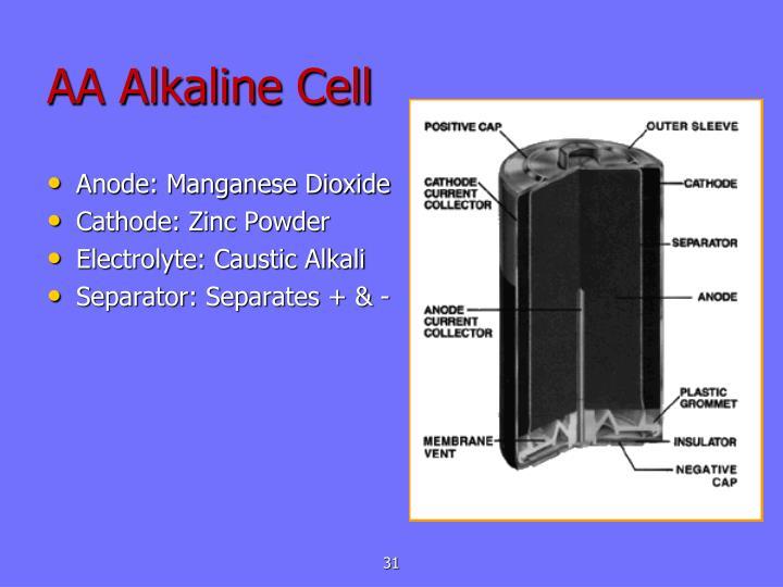 AA Alkaline Cell