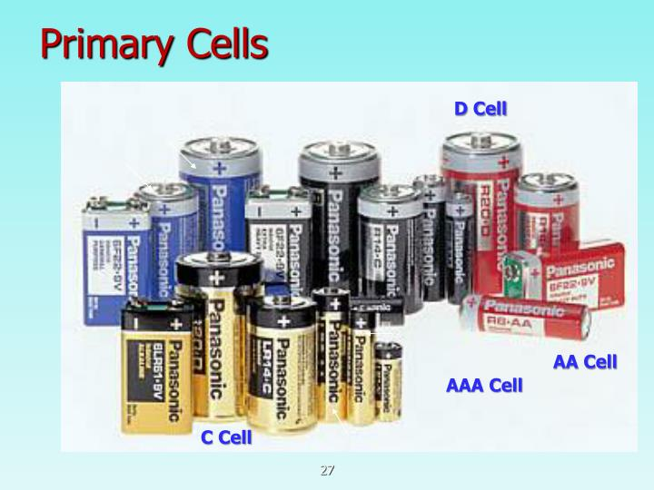 Primary Cells