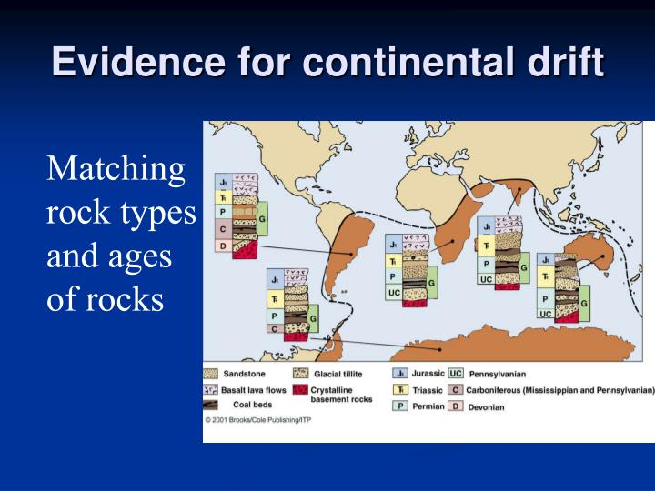 biological evidence of continental drift Study flashcards on continental drift - as geography at cramcom quickly memorize the terms  what biological evidence for continental drift is there.