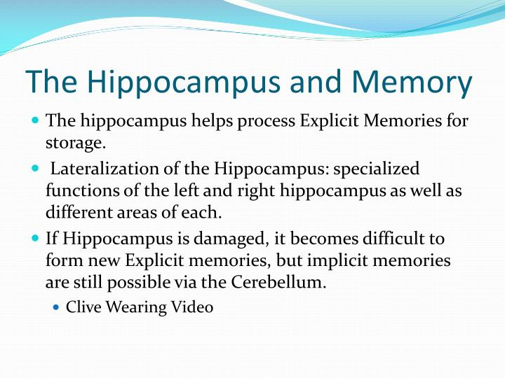 The Hippocampus and Memory