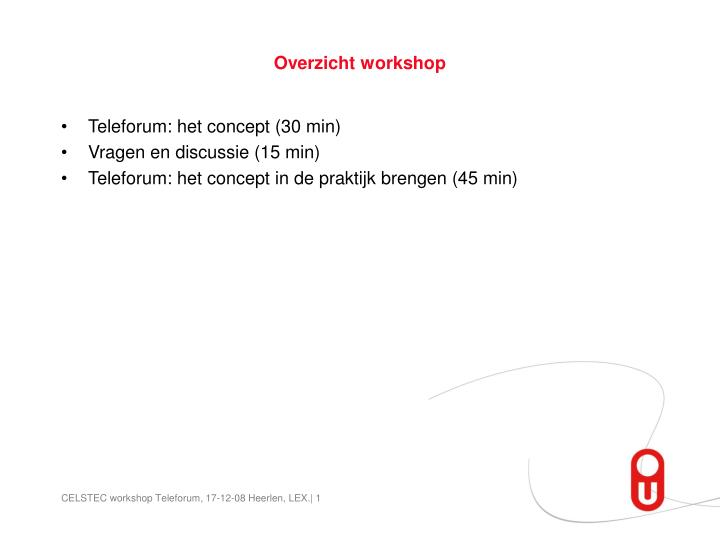 Overzicht workshop