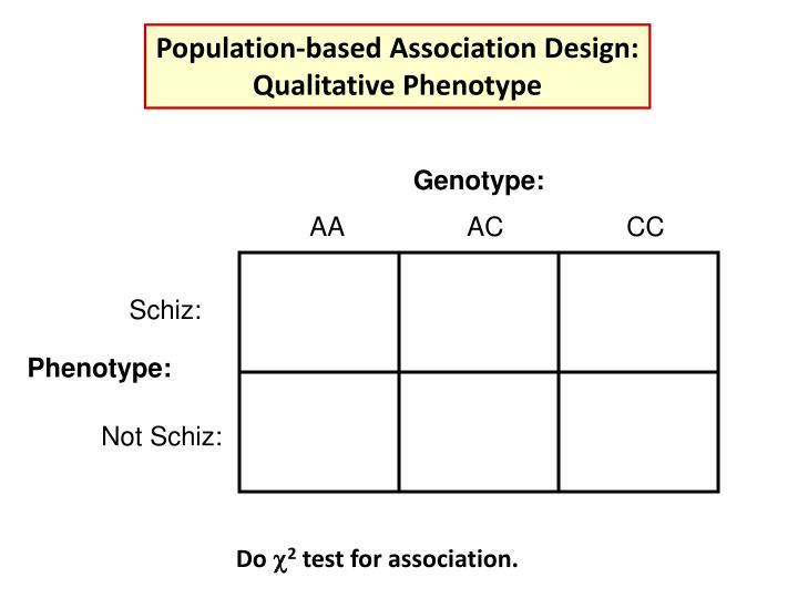 Genotype: