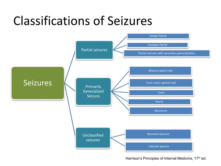 Classifications of Seizures