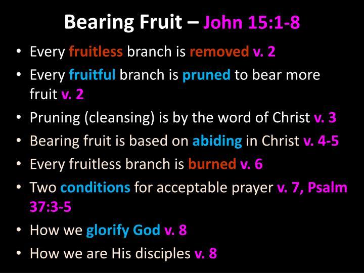 Joh 15 1 8