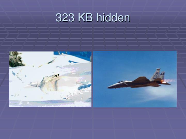 323 KB hidden