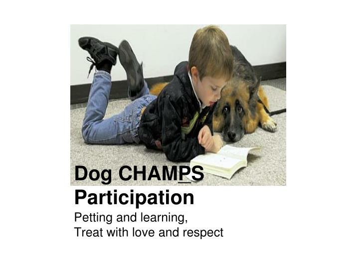 Dog CHAM