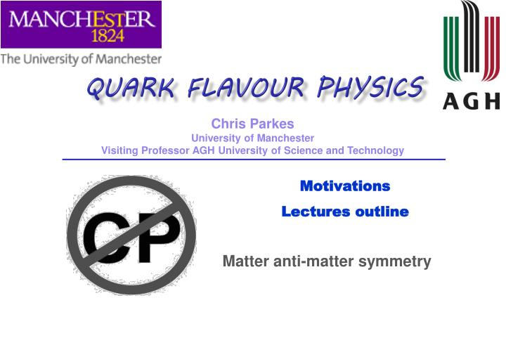 Quark Flavour Physics