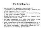 political causes2