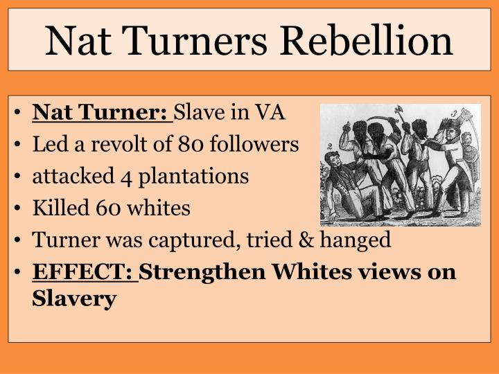 Nat Turners Rebellion