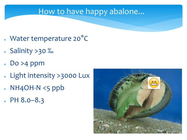 How to have happy abalone...
