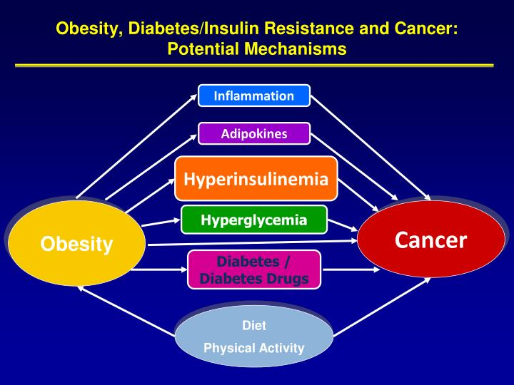 Obesity, Diabetes/Insulin Resistance and Cancer: