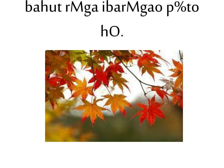 bahut