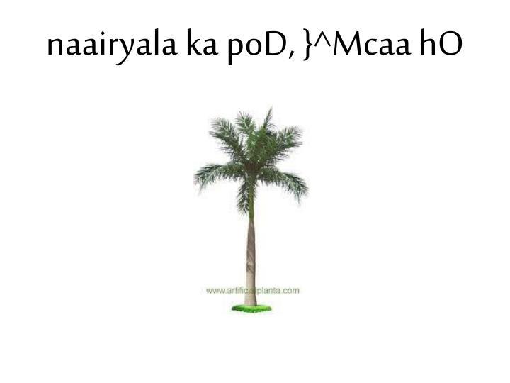 naairyala