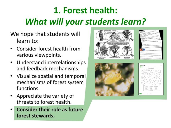 1. Forest health: