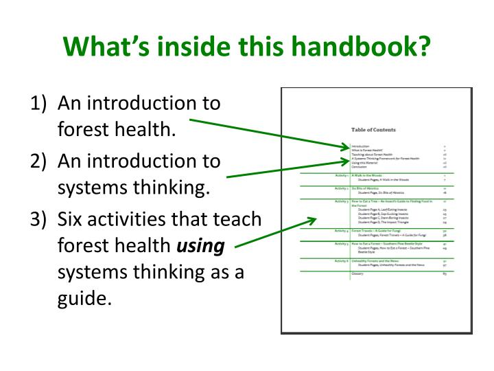 What's inside this handbook?