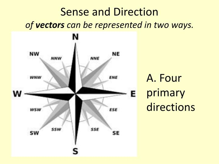 Sense and Direction