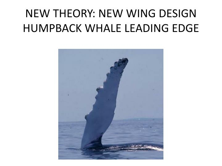 NEW THEORY: NEW WING DESIGN