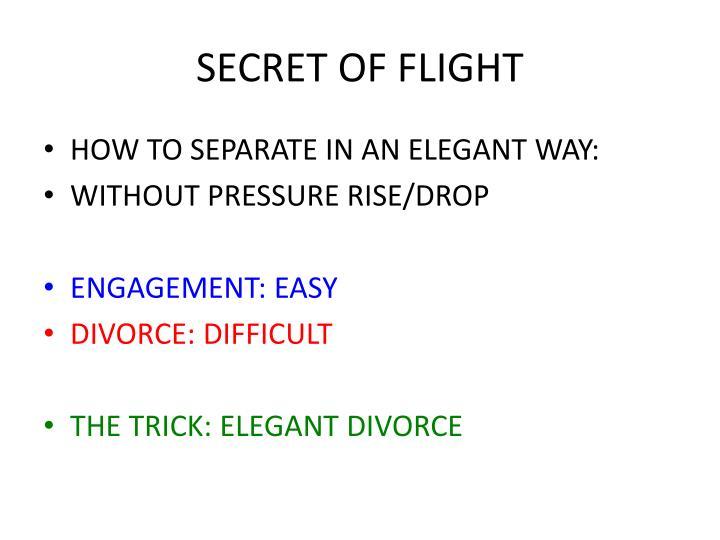 SECRET OF FLIGHT