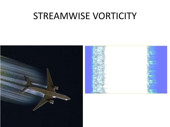 STREAMWISE VORTICITY