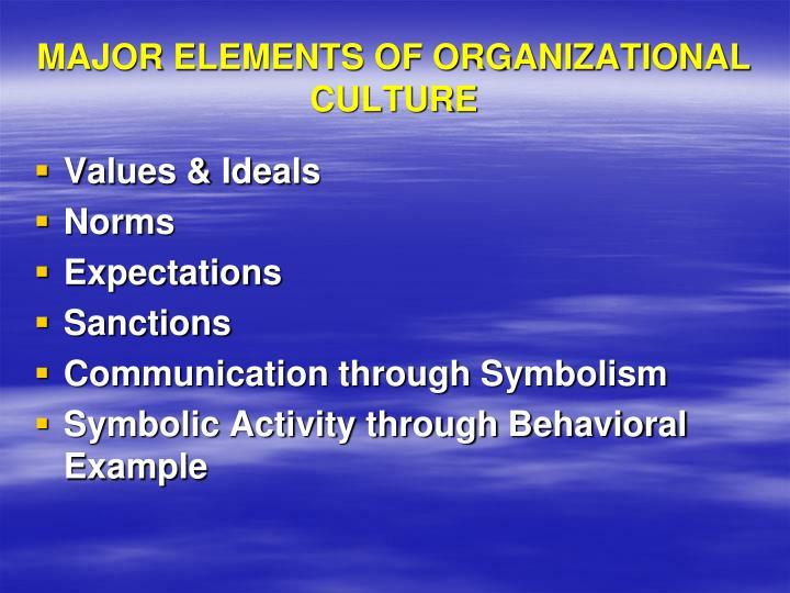 MAJOR ELEMENTS OF ORGANIZATIONAL CULTURE