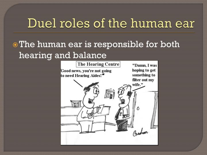 Duel roles of the