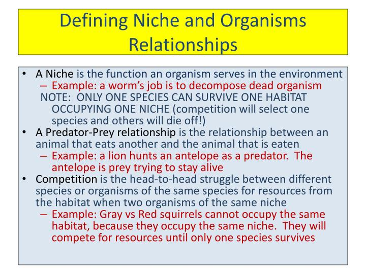 Defining Niche and Organisms Relationships