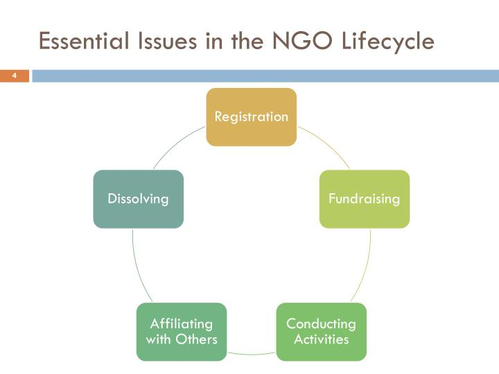 Essential Issues in the NGO Lifecycle