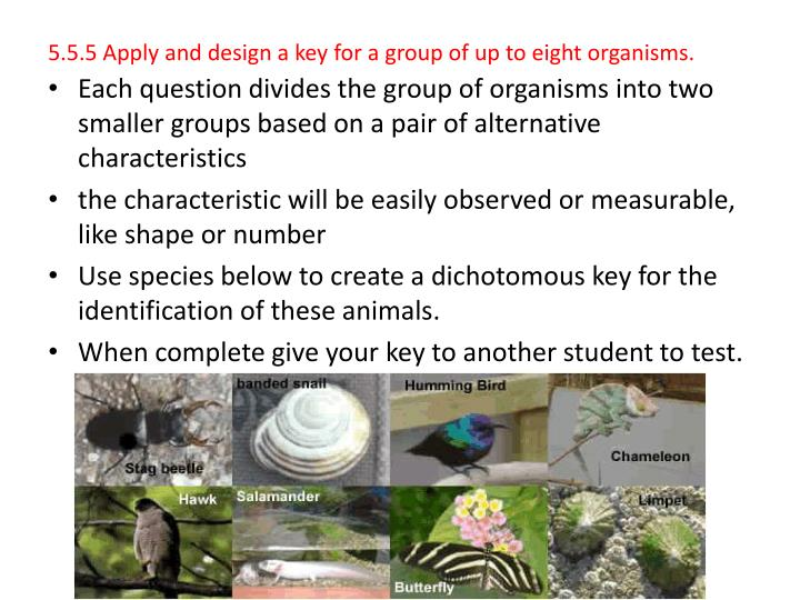5.5.5 Apply and design a key for a group of up to eight organisms.