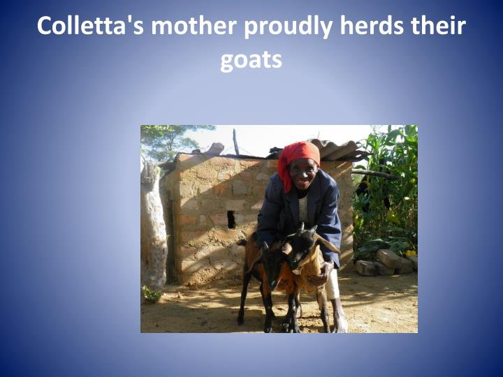 Colletta's