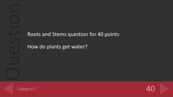Roots and Stems question for 40 points