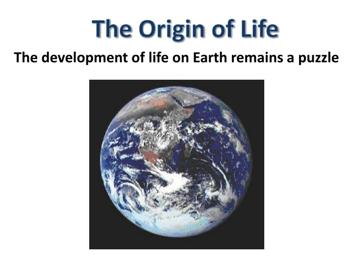 origin of life on earth How did life begin on earth though no one is ever likely to know the whole story, virtually everyone has wondered at one time or another, how life on earth began.