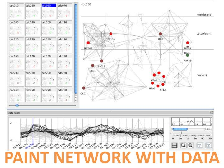 PAINT NETWORK WITH DATA