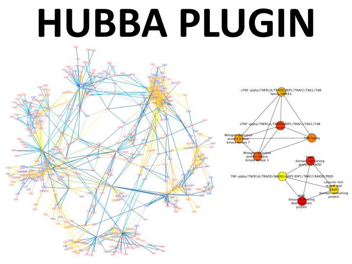 HUBBA PLUGIN