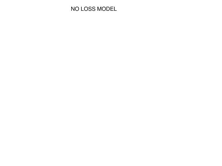 NO LOSS MODEL