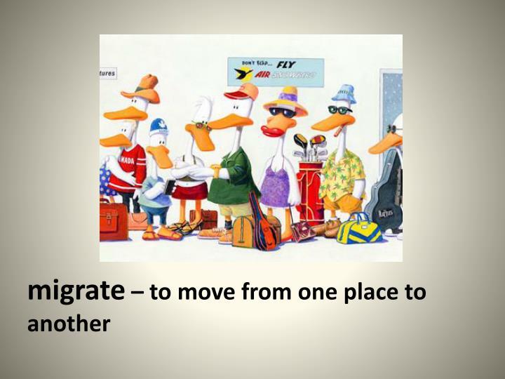 migrate