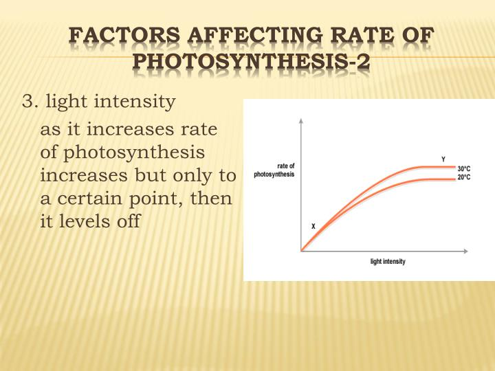 factors affecting rate of photosynthesis Three factors can limit the speed of photosynthesis: light intensity, carbon dioxide concentration and temperature if you plot the rate of photosynthesis against the.