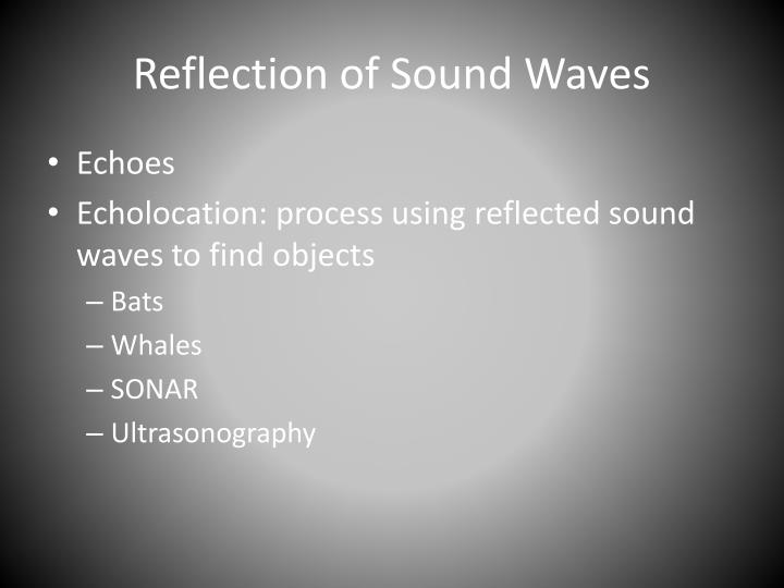 Reflection of Sound Waves