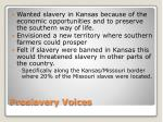 proslavery voices