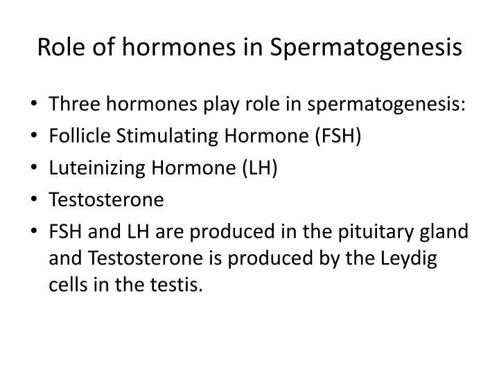 Role of hormones in Spermatogenesis