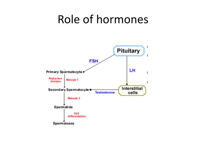 Role of hormones