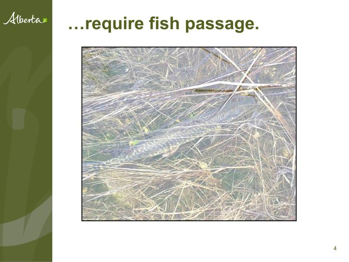 …require fish passage.
