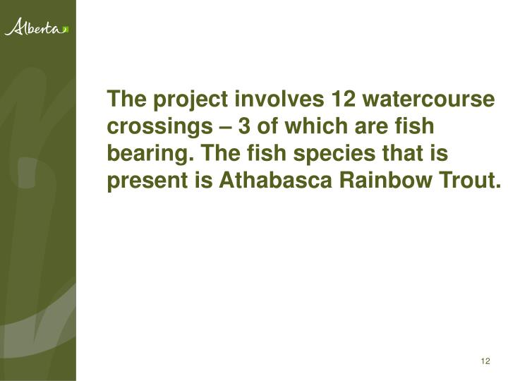 The project involves 12 watercourse crossings – 3 of which are fish bearing. The fish species that is present is Athabasca Rainbow Trout.