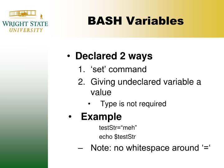 BASH Variables