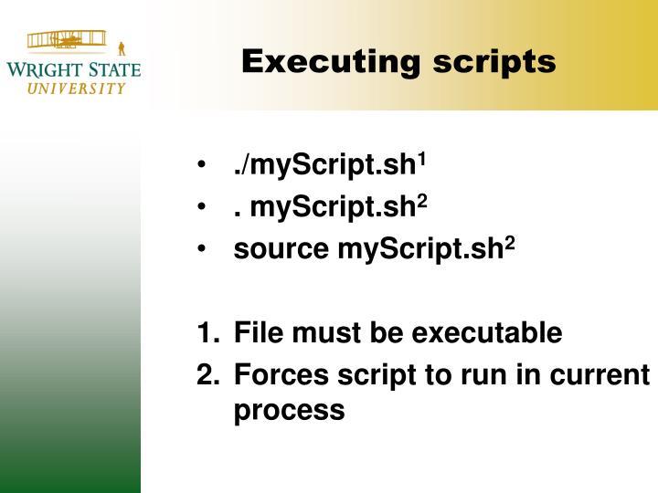 Executing scripts