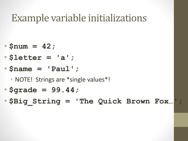 Example variable initializations