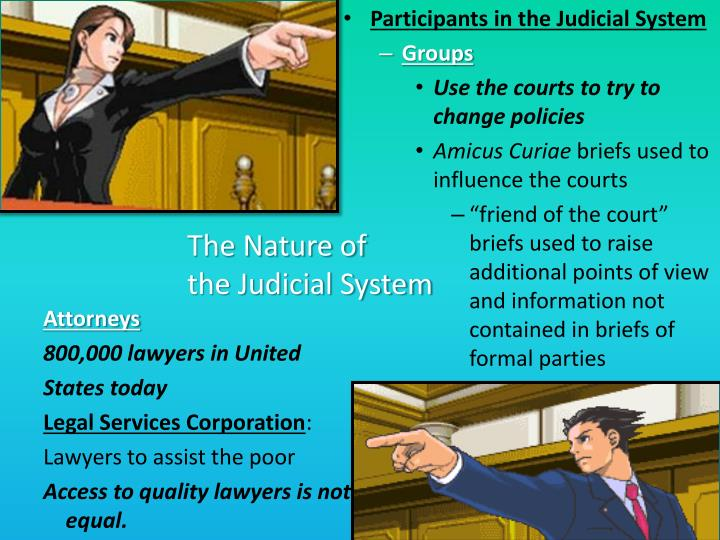 Participants in the Judicial System