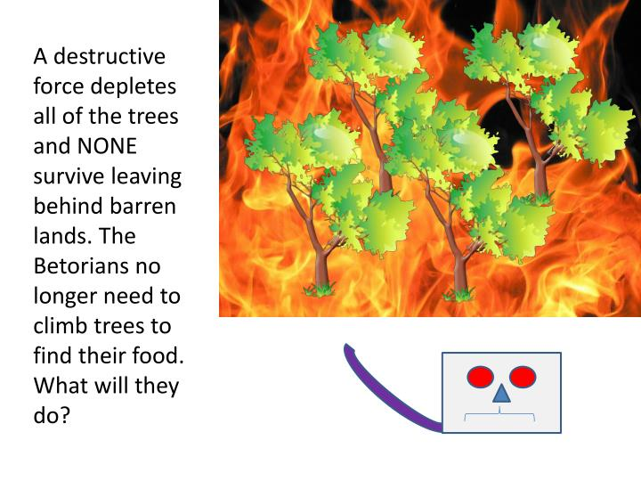 A destructive force depletes all of the trees and NONE survive leaving behind barren lands. The