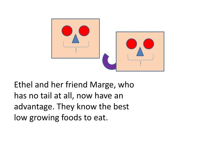 Ethel and her friend Marge, who has no tail at all, now have an advantage. They know the best low growing foods to eat.
